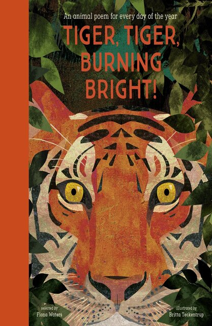 rsz_tiger-tiger-burning-bright-–-an-animal-poem-for-every-day-of-the-year-641-1